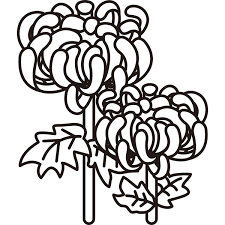 植物 菊モノクロ 無料イラストpowerpointテンプレート配布サイト