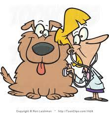 Image result for veterinarian visit cartoon image