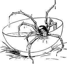 Anansi The Spider Coloring Page - Coloring Home