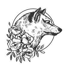 Feel free to explore, study and enjoy paintings with paintingvalley.com Black And White Wolf Stock Photos And Images 123rf