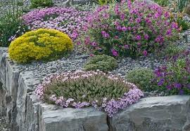 Small Picture Rock gardening tips for small spaces