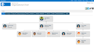 Organizational Chart Global