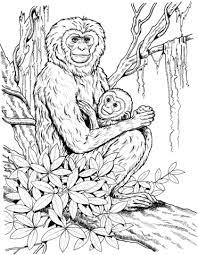 Gibbon Moeder Met Baby Kleurplaat Gratis Kleurplaten Printen