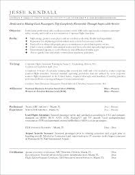 Security Analyst Resume Amazing Obiee Sample Resumes Sample Resume Sample Resumes Business Analyst