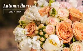 boston florist giselle s flowers and gifts