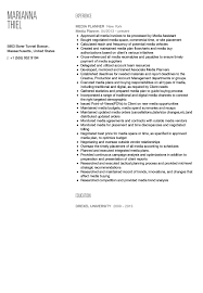 Media Planner Resume Sample Velvet Jobs