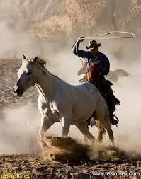 kovboy ile ilgili görsel sonucu