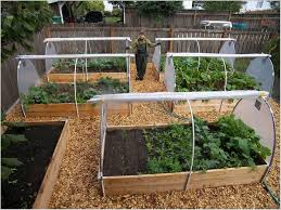 Small Picture 51 Vegetable Garden Design App vegetable garden design app
