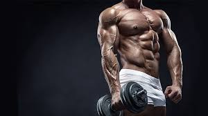 Testosterone • WikiStero • The Anabolic Steroids Bible