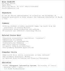 Professional Resumes Template Awesome Professional Job Resume Template Sample Of Curriculum Vitae For Job
