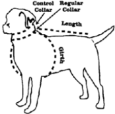 Orvis Mens Size Chart Dog Clothing Size Chart At Orvis