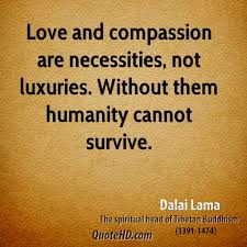 Compassion Quotes Cool 48 Best Compassion Quotes And Sayings