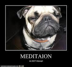 Image result for meditation meme