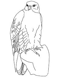 Vogel Kleurplaat Voor Volwassenen Vogel Malvorlagen Malvorlagen1001