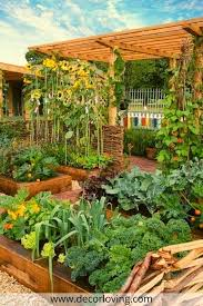 18 fabulous backyard vegetable garden