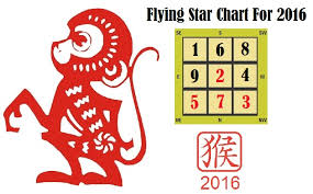 Flying Star 2016