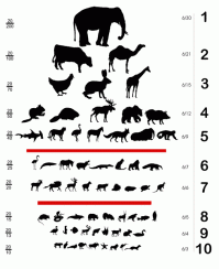 Animal Eye Size Chart Animal Eye Size Chart Snellen Eye Chart Reinvented For