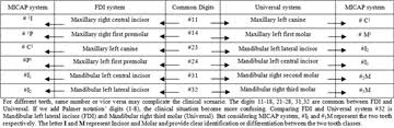 Fdi Notation Charting Learning Of Format Of New Tooth Notation System A Pilot Study
