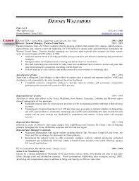 Remarkable Design Vp Of Sales Resume Dennis Walthers Vp Sales Resume
