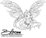 Раскраски bloom