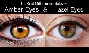 The Real Difference Between Amber Eyes And Hazel Eyes   Hazel eyes ...