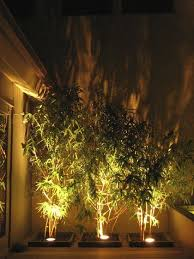 outdoor landscape lighting for trees. note to self, remember lighting elements in the backyard | theme pinterest backyard, and gardens outdoor landscape for trees