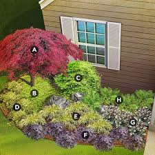 Small Picture Best 20 Japanese garden plants ideas on Pinterest Shade plants