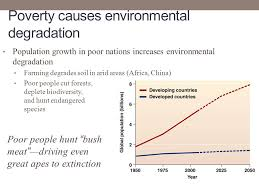 poverty causes environmental degradation