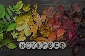 766,521 November Photos - Free & Royalty-Free Stock Photos from Dreamstime