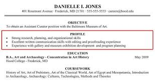 Profile Summary Examples Resume - Examples Of Resumes