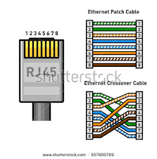 rj45 stock images royalty images vectors shutterstock ethernet connector pinout color code straight and crossover rj45 connect illustration