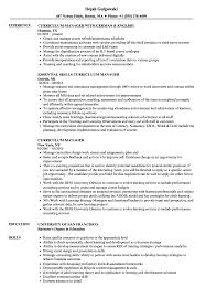 Curriculum Manager Resume Samples Velvet Jobs