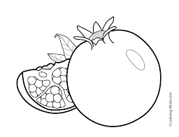 Pomegranate Fruits Coloring Pages For Kids