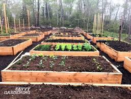 vegetable bed soil