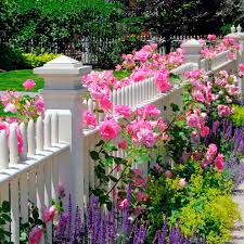 flower bed ideas for the front of your