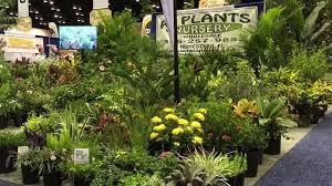 r plants nursery whole