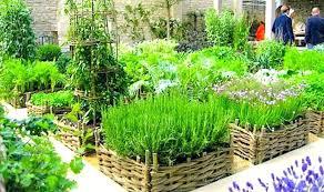 patio herb garden herb garden containers having fresh herbs on hand patio herb garden designs containers patio herb garden