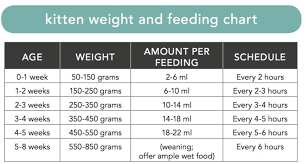 Dog Food Chart By Weight And Age Kitten Puppy Sos Care Pet Info Alley