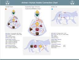 Human Design New Chart Animal Human Awake Connection