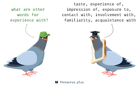 21 Experience With Synonyms Similar Words For Experience With