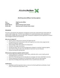 Job Description Ceo Magdalene Project Org
