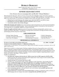 auto sales resume samples channel sales resume example