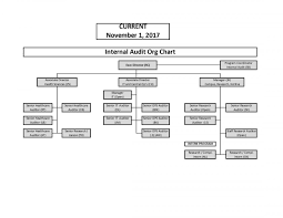 Audit Structure Chart Organizational Chart Internal Audit