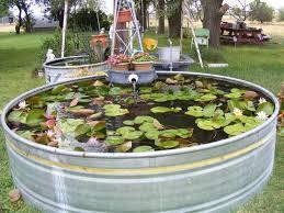 pond decorations moestuin
