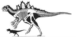 Godzilla Evolution Chart What Kind Of Dinosaur Is Godzilla Science Smithsonian