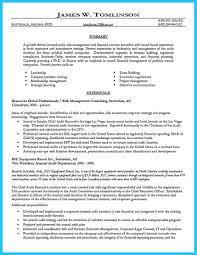how to write resume summary service resume how to write resume summary how to write an effective nursing resume summary credential audit resume