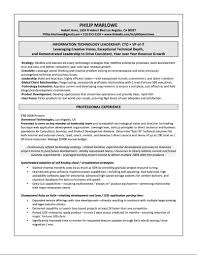 It Director Resume Samples Senior Manager Executive 2017 Indian