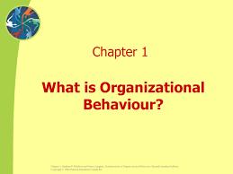 What Is Organizational Behavior What Is Organizational Behavior