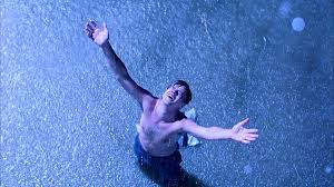 "get busy living or get busy dying the 20th anniversary of ""the get busy living or get busy dying the 20th anniversary of ""the shawshank redemption"" the fluff is raging"