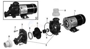 jacuzzi magnum force pump wiring diagram wirdig spa pump parts besides jacuzzi magnum pool pump parts besides jacuzzi